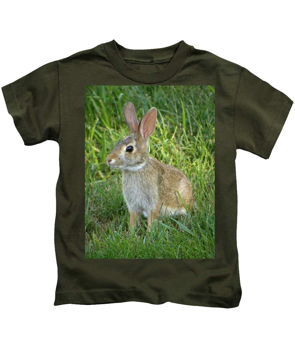 Rabbit Kids T-Shirt featuring the photograph Young Rabbit by Sandi OReilly