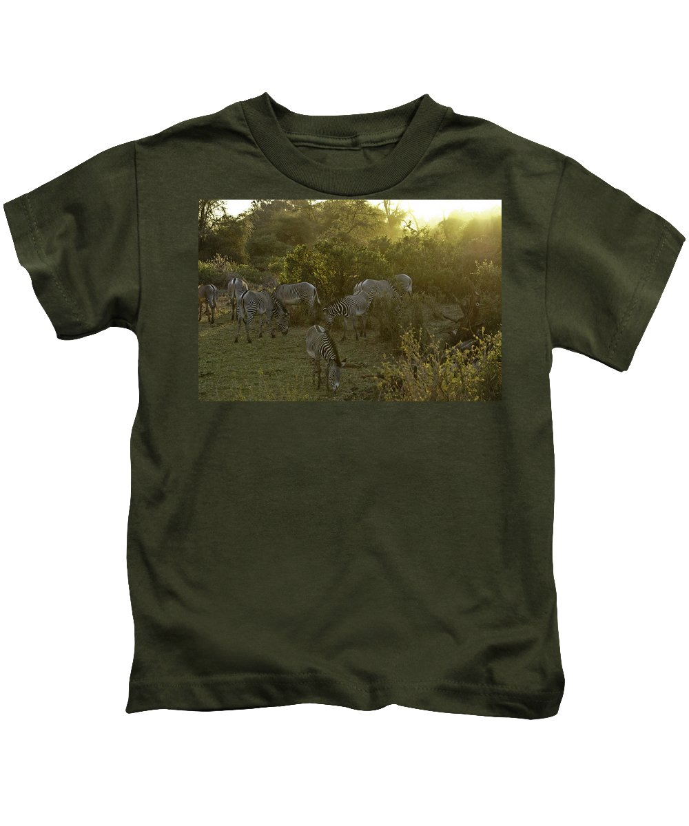Africa Kids T-Shirt featuring the photograph Zebras In A Glen by Michele Burgess