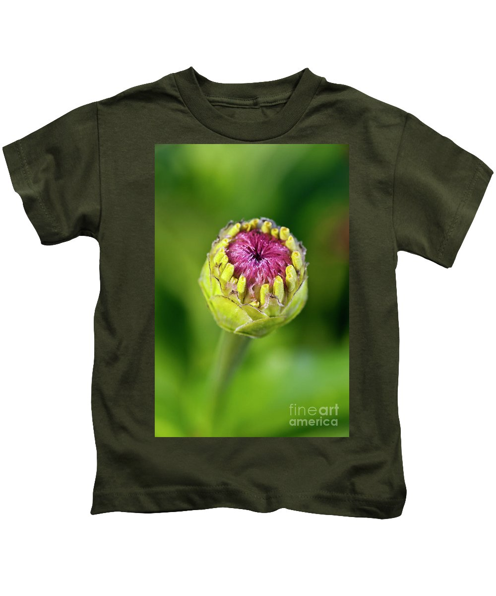 Asteraceae Kids T-Shirt featuring the photograph Zinnia Bud Close-up by John Greim