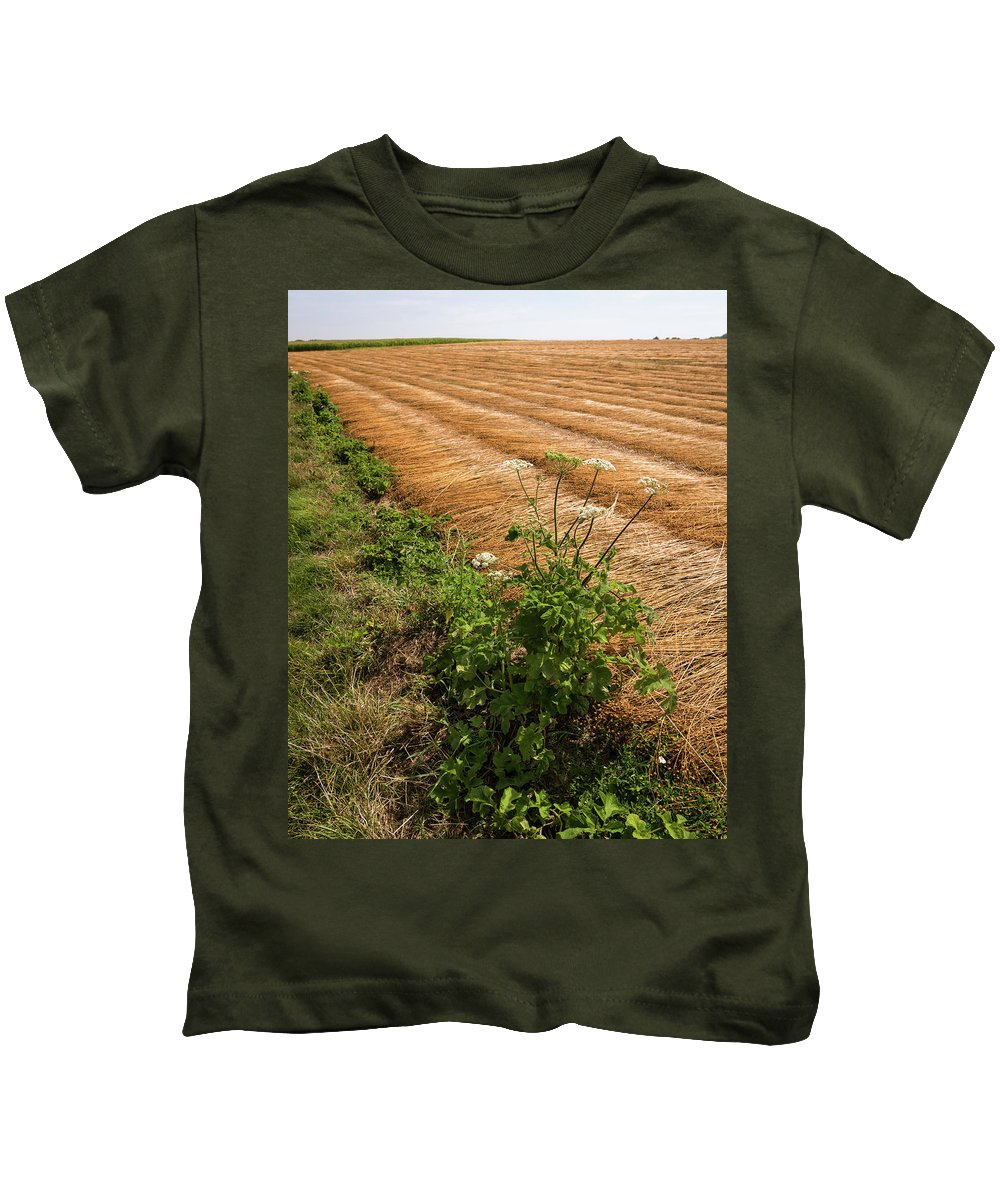 Harvest Kids T-Shirt featuring the photograph Field With Brown Cut Flax In Rows Drying In The Sun by Stefan Rotter