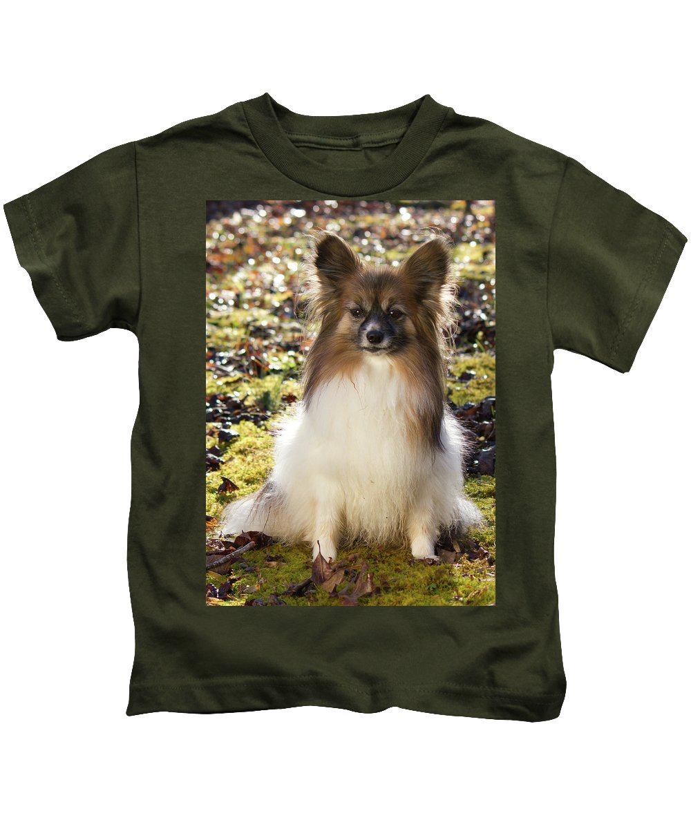 Papillon Kids T-Shirt featuring the photograph Papillon Sitting In Leaves by Donna Anderson