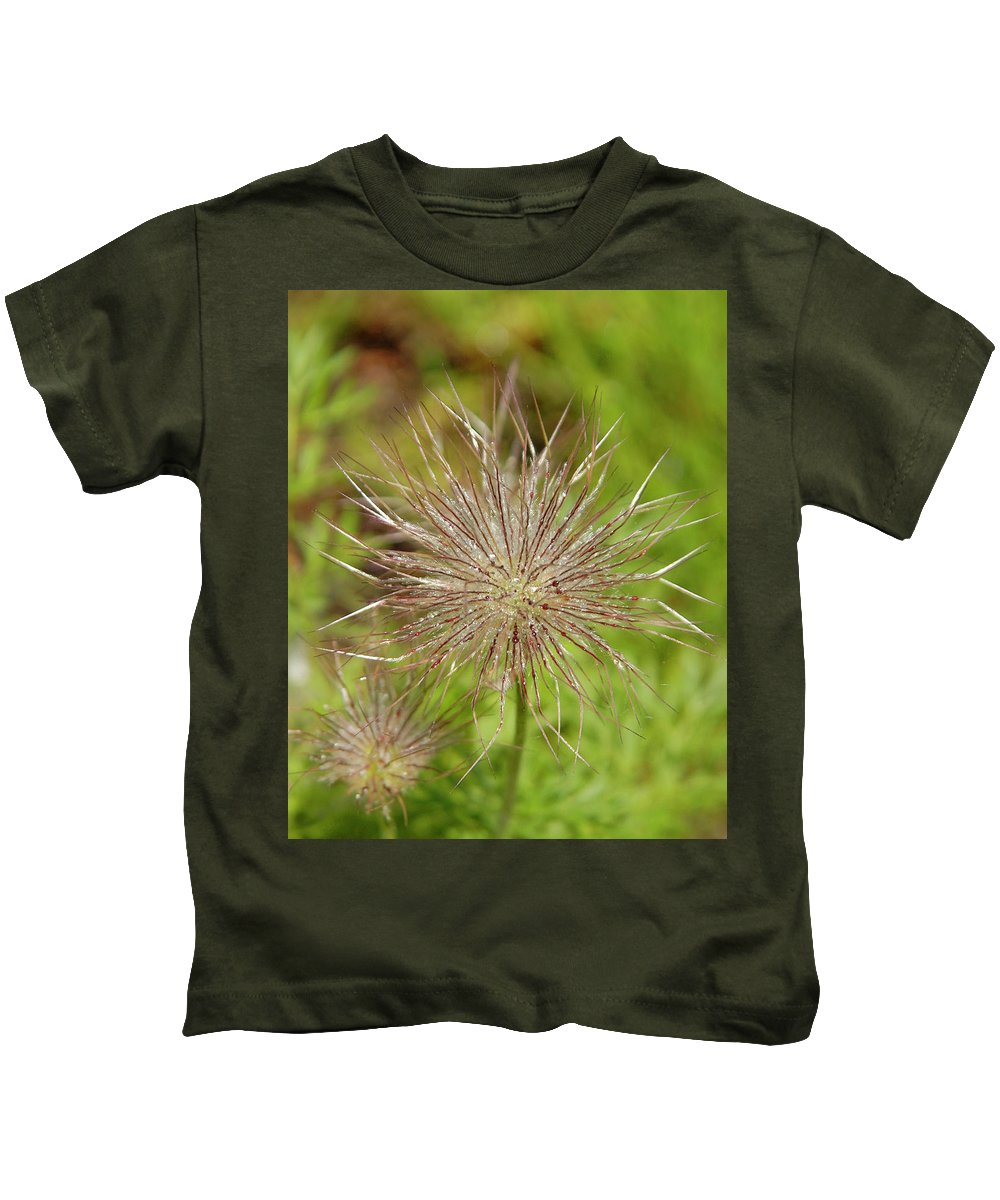 Spiky Kids T-Shirt featuring the photograph Spiky Plant Pulsatila Halleri by Victor Lord Denovan