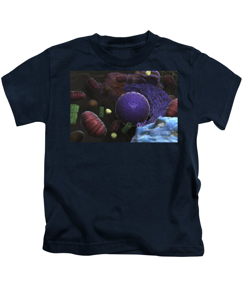 Cells Kids T-Shirt featuring the photograph Inner Workings Of A Human Cell by Science Picture Co