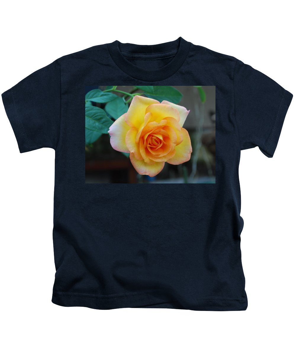 Pot Grown Kids T-Shirt featuring the photograph Rose by Robert Floyd