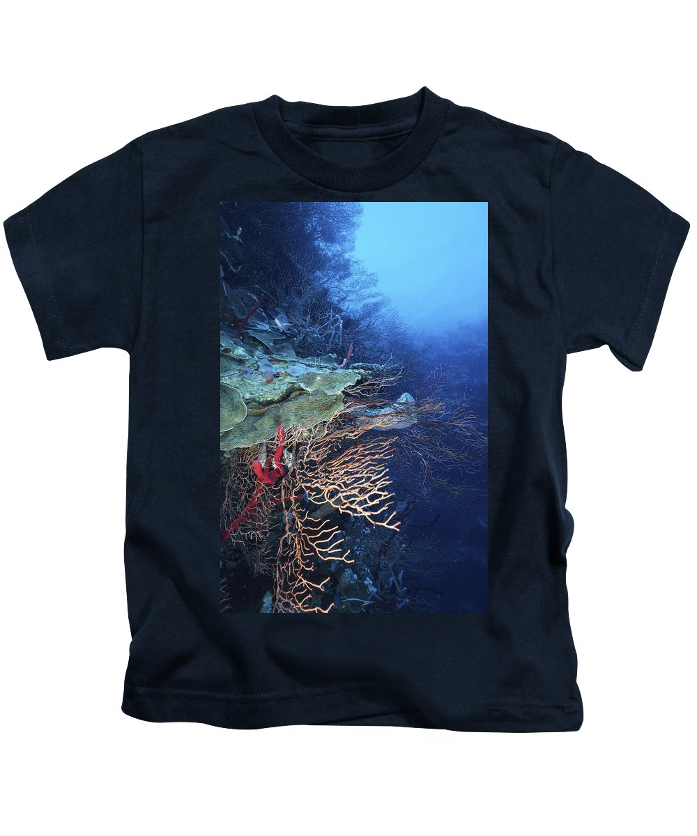 Angle Kids T-Shirt featuring the photograph A Peaceful Place by Sandra Edwards