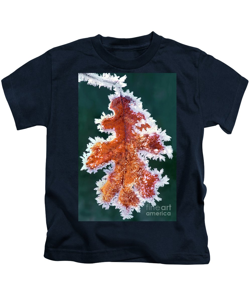 North America Kids T-Shirt featuring the photograph Black Oak Leaf Rime Ice Yosemite National Park California by Dave Welling