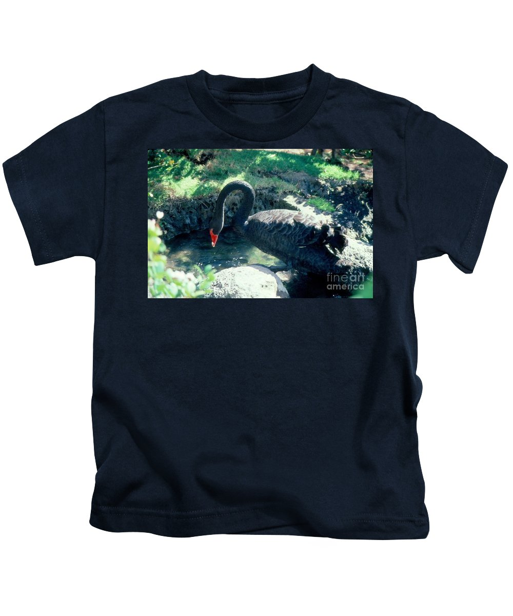 Swans Kids T-Shirt featuring the photograph Black Swan by Jussta Jussta