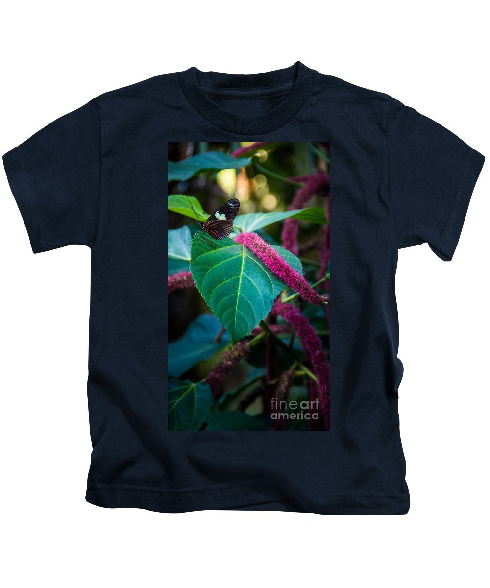 Butterfly Kids T-Shirt featuring the photograph Butterfly 7 by Perry Webster