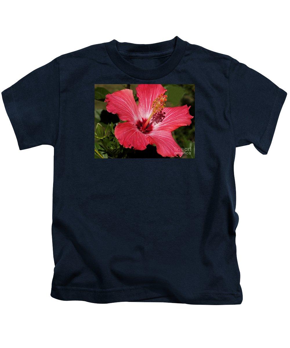 Hibiscus Kids T-Shirt featuring the photograph Garden Beauty by Ann Horn