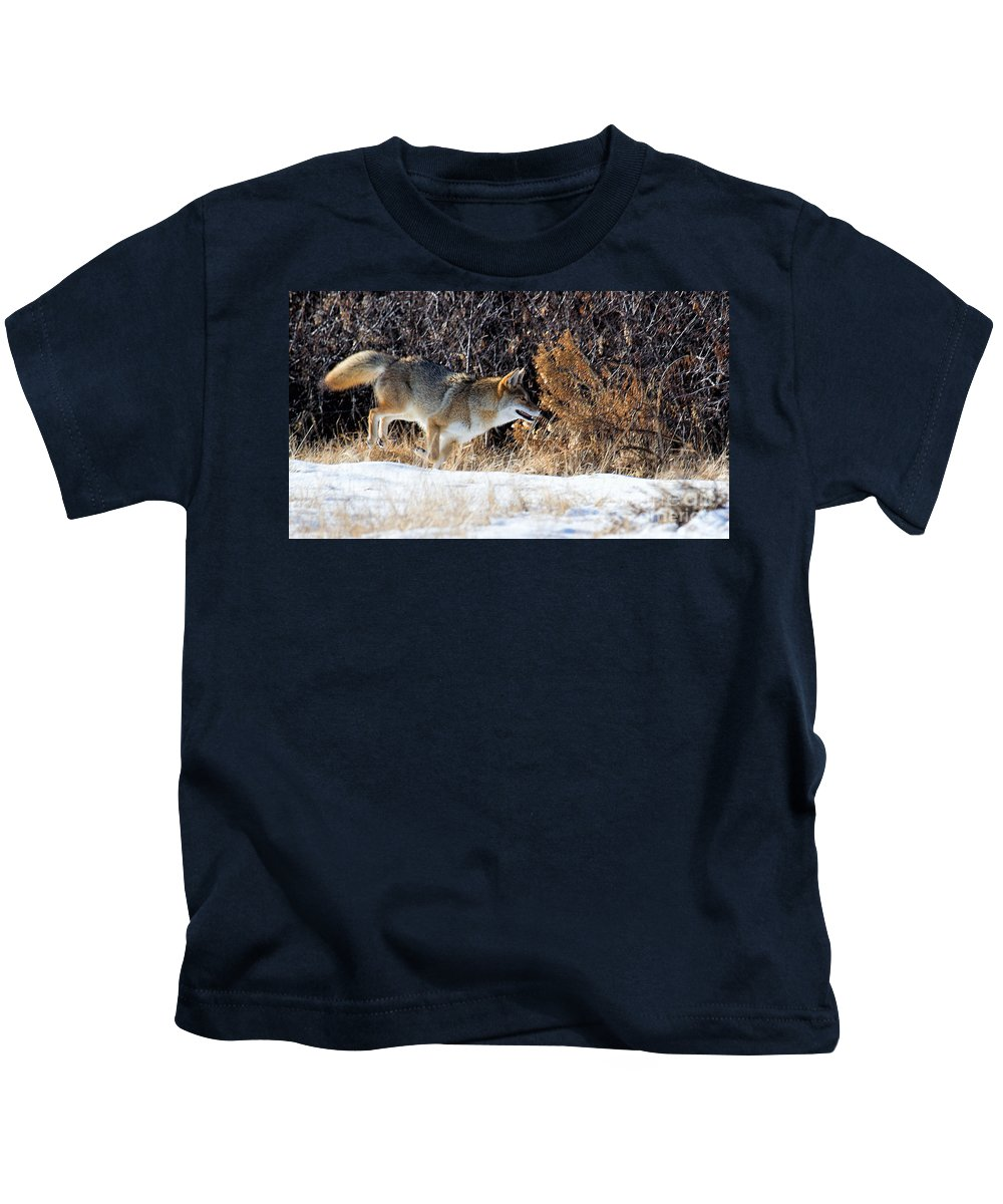 Coyote Kids T-Shirt featuring the photograph Hot Pursuit by Jim Garrison
