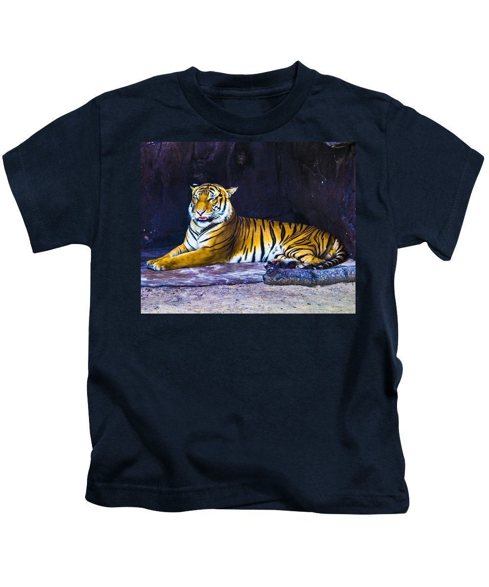 Tigers Kids T-Shirt featuring the photograph Lazy Days by Stephen Brown