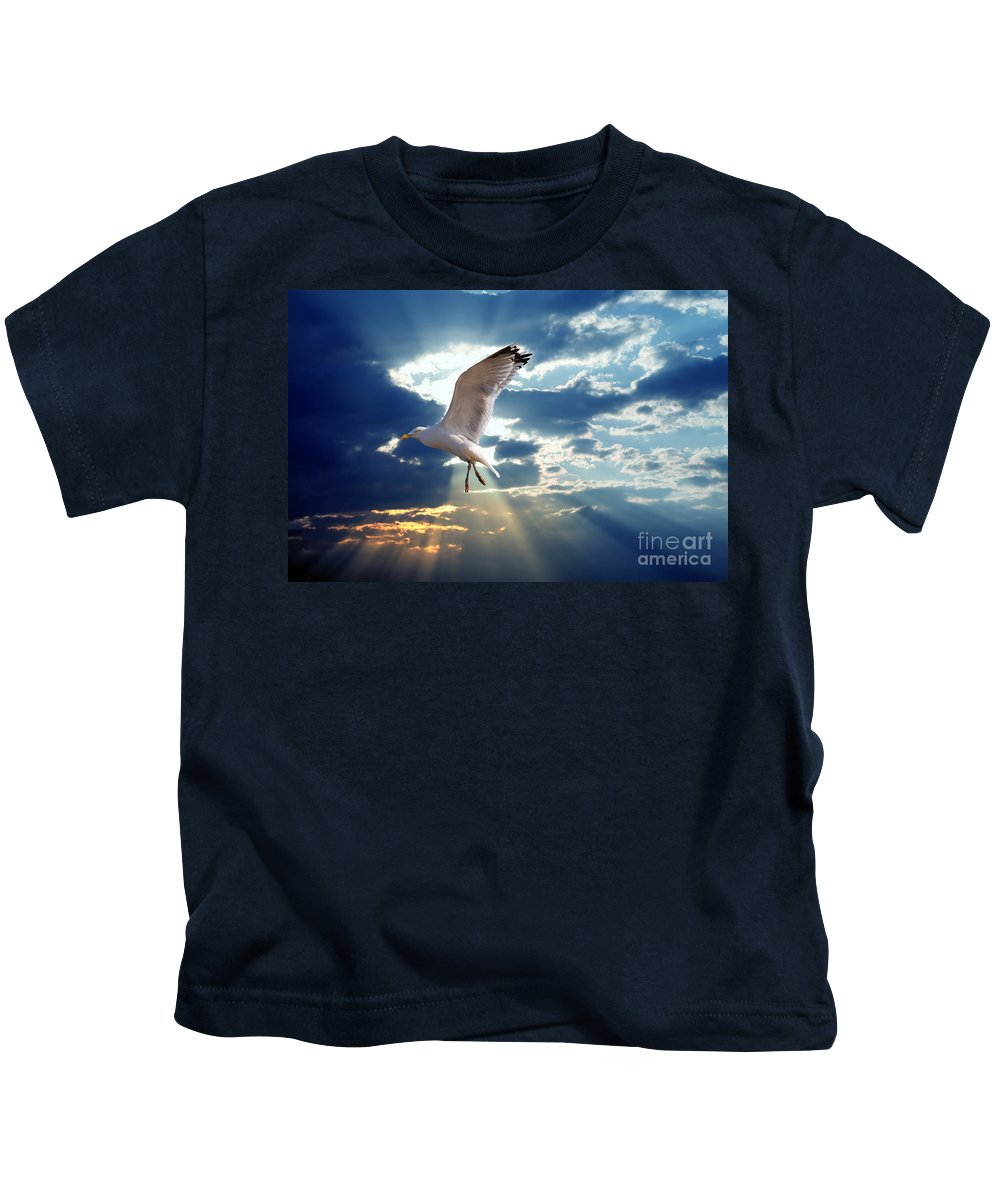 Arms Kids T-Shirt featuring the photograph Majestic Bird Against Sunset Sky by Michal Bednarek
