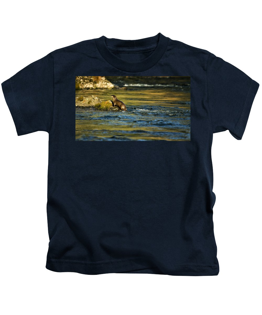 River Otter Kids T-Shirt featuring the photograph River Otter On A Rock by Belinda Greb