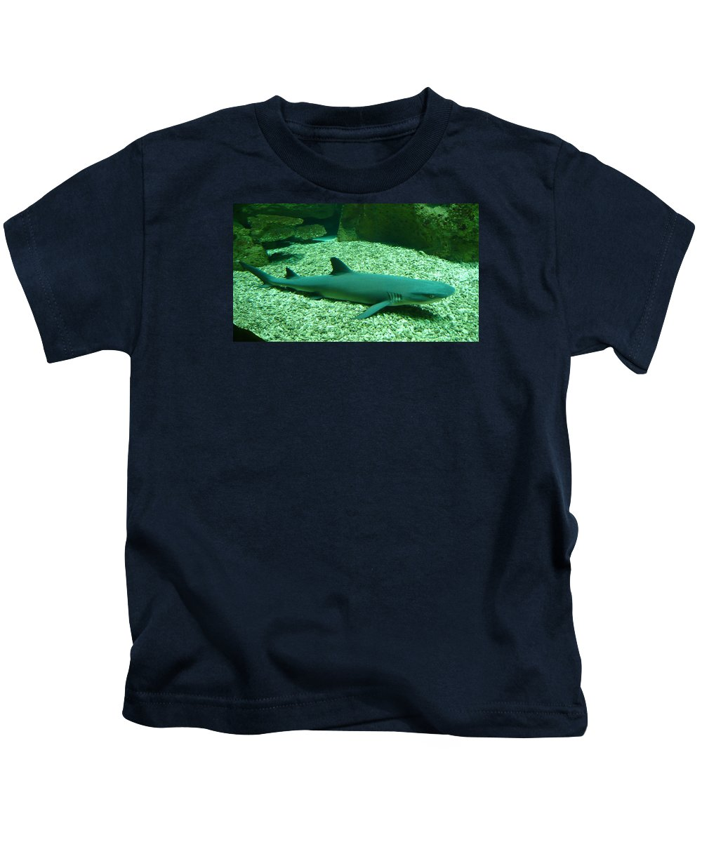 Shark Kids T-Shirt featuring the photograph Shark by FL collection
