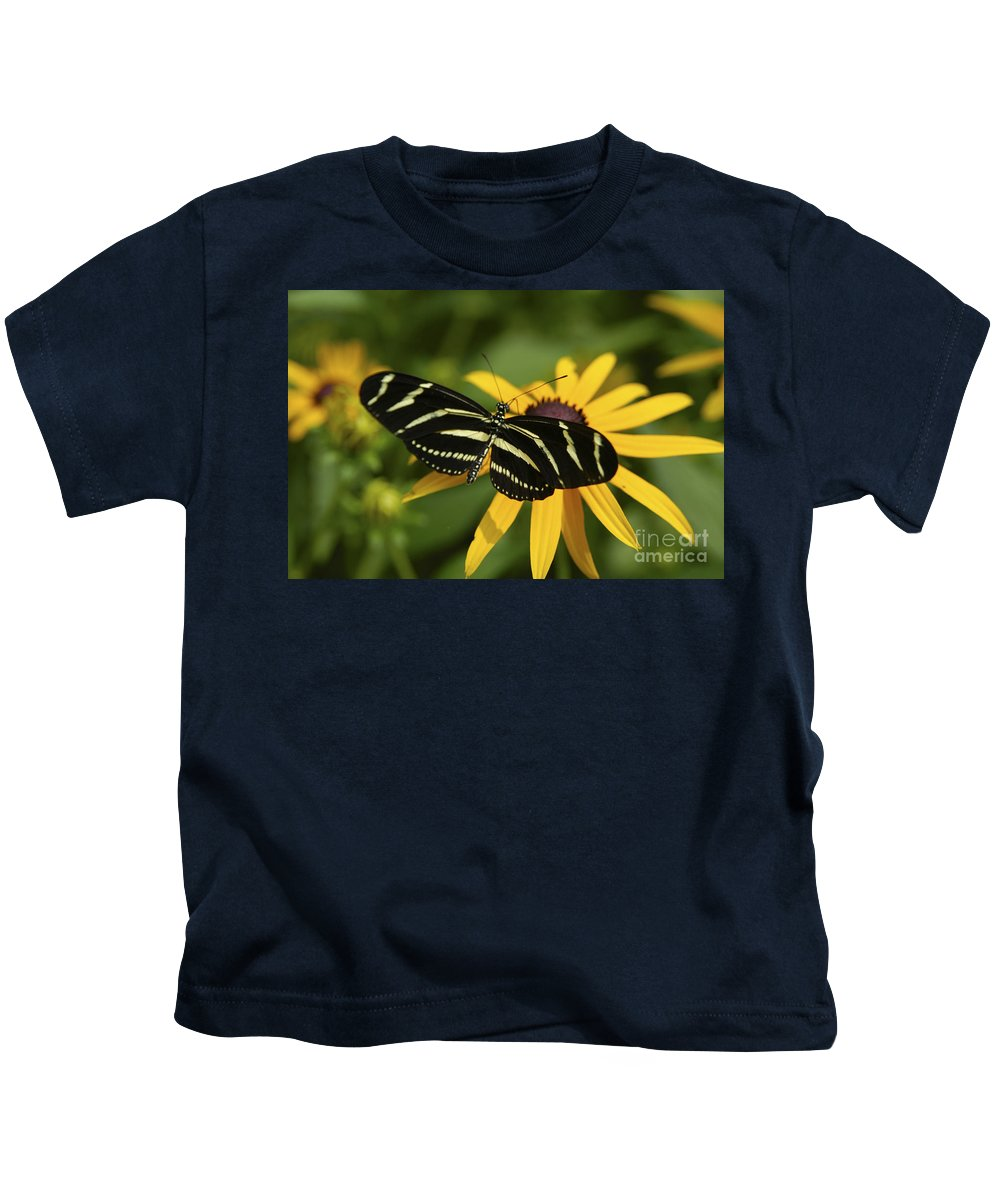 Butterfly Kids T-Shirt featuring the photograph Zebra Butterfly by Anthony Sacco