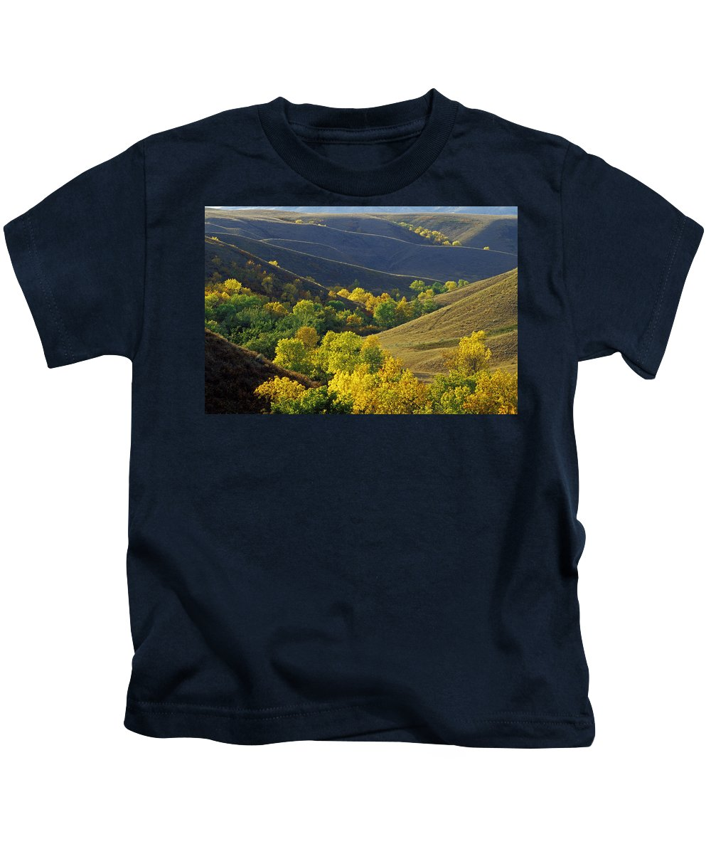 Aspen Tree Kids T-Shirt featuring the photograph Aspen Bluffs In Autumn Colors by Mike Grandmailson