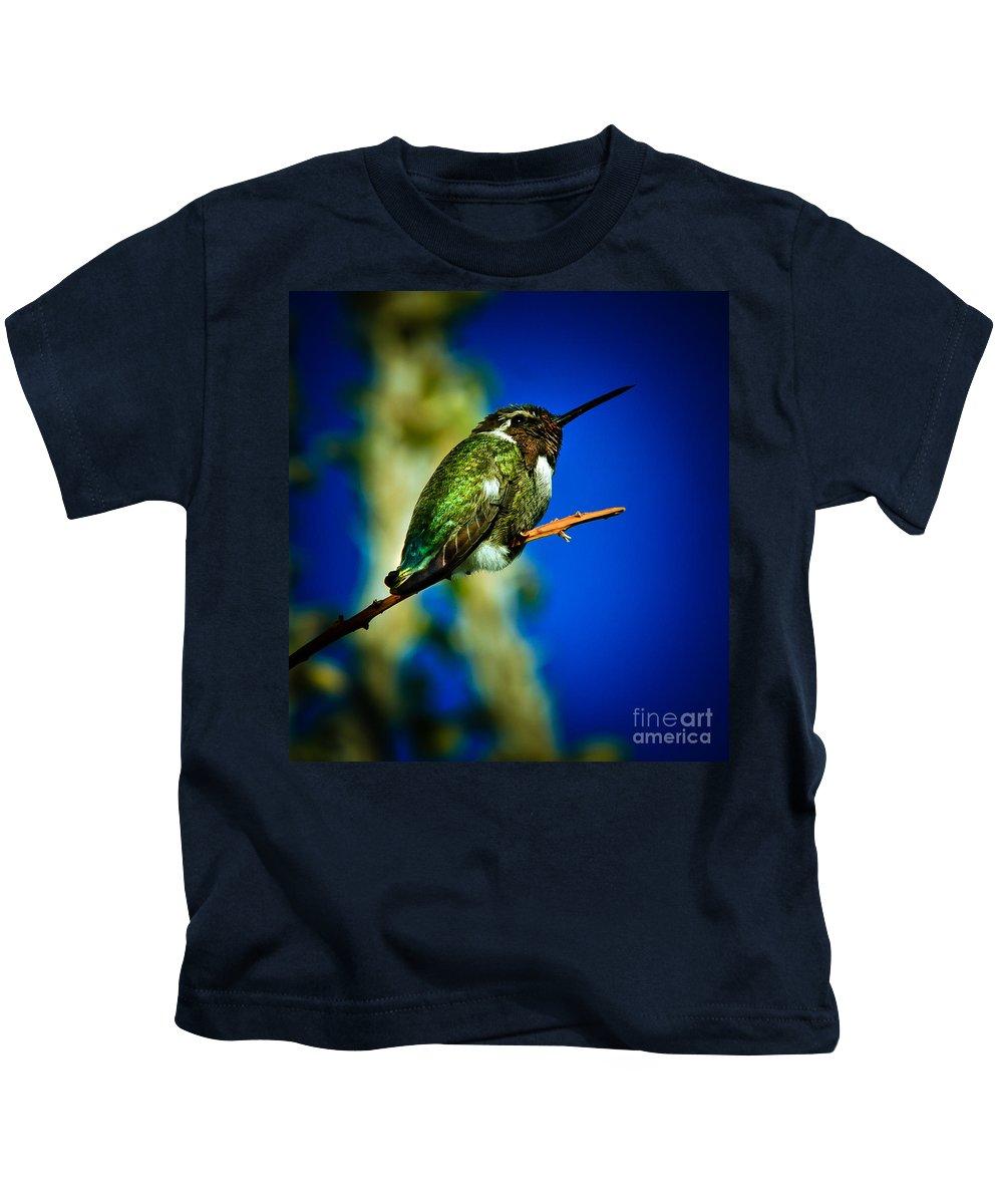 Birds Kids T-Shirt featuring the photograph Costa's Hummingbird by Robert Bales