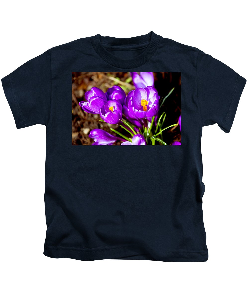 Crocus Kids T-Shirt featuring the photograph Crocus by Pati Photography