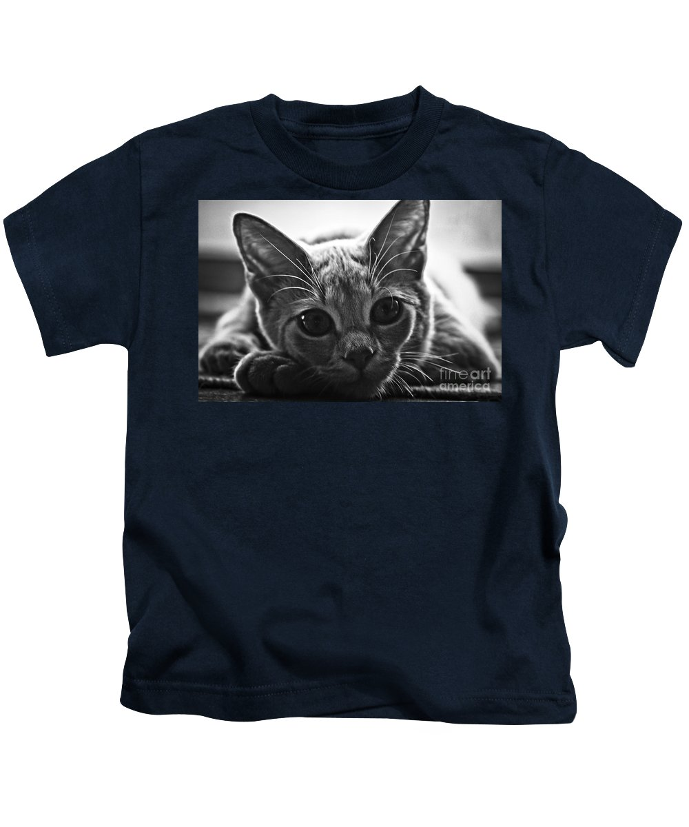 Kitten Kids T-Shirt featuring the photograph Downtime by Kim Henderson