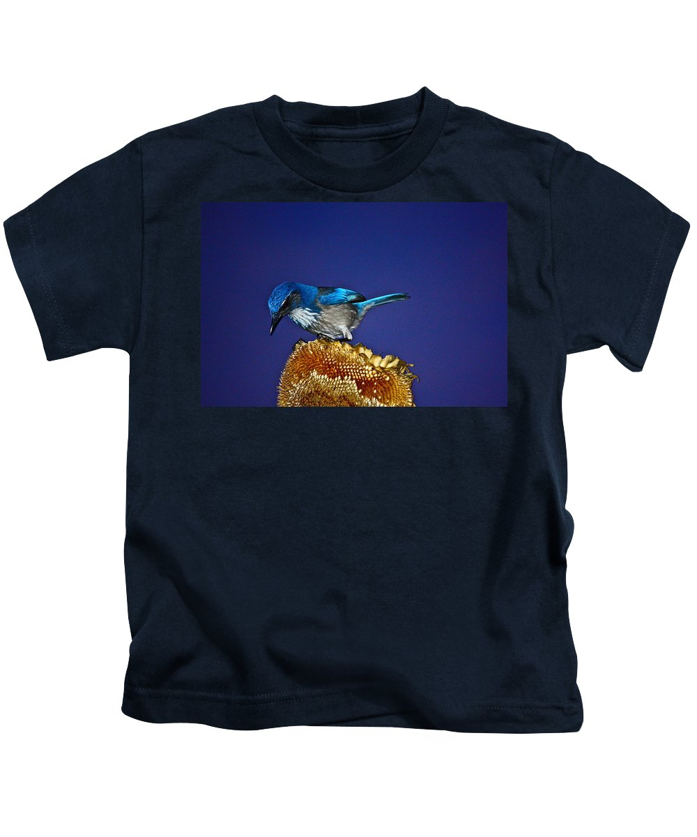 Birds Kids T-Shirt featuring the photograph Evening Visitor by Diana Hatcher