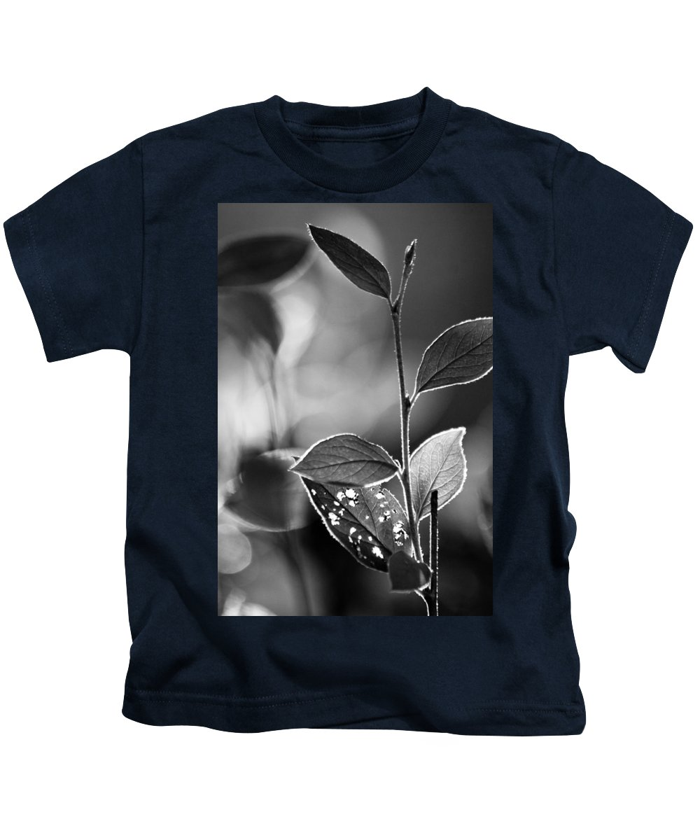 Leaf Kids T-Shirt featuring the photograph Natures Back Light by Lauri Novak