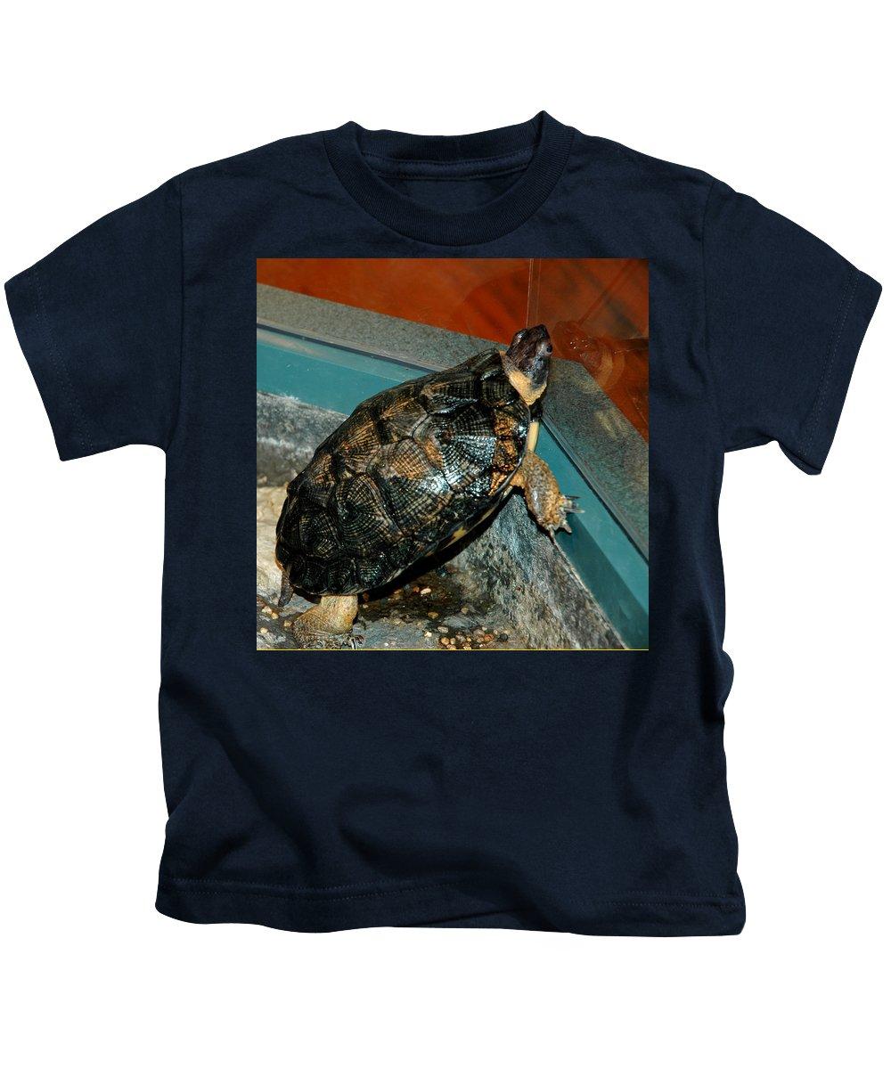 Usa Kids T-Shirt featuring the photograph Reflecting Turtle by LeeAnn McLaneGoetz McLaneGoetzStudioLLCcom