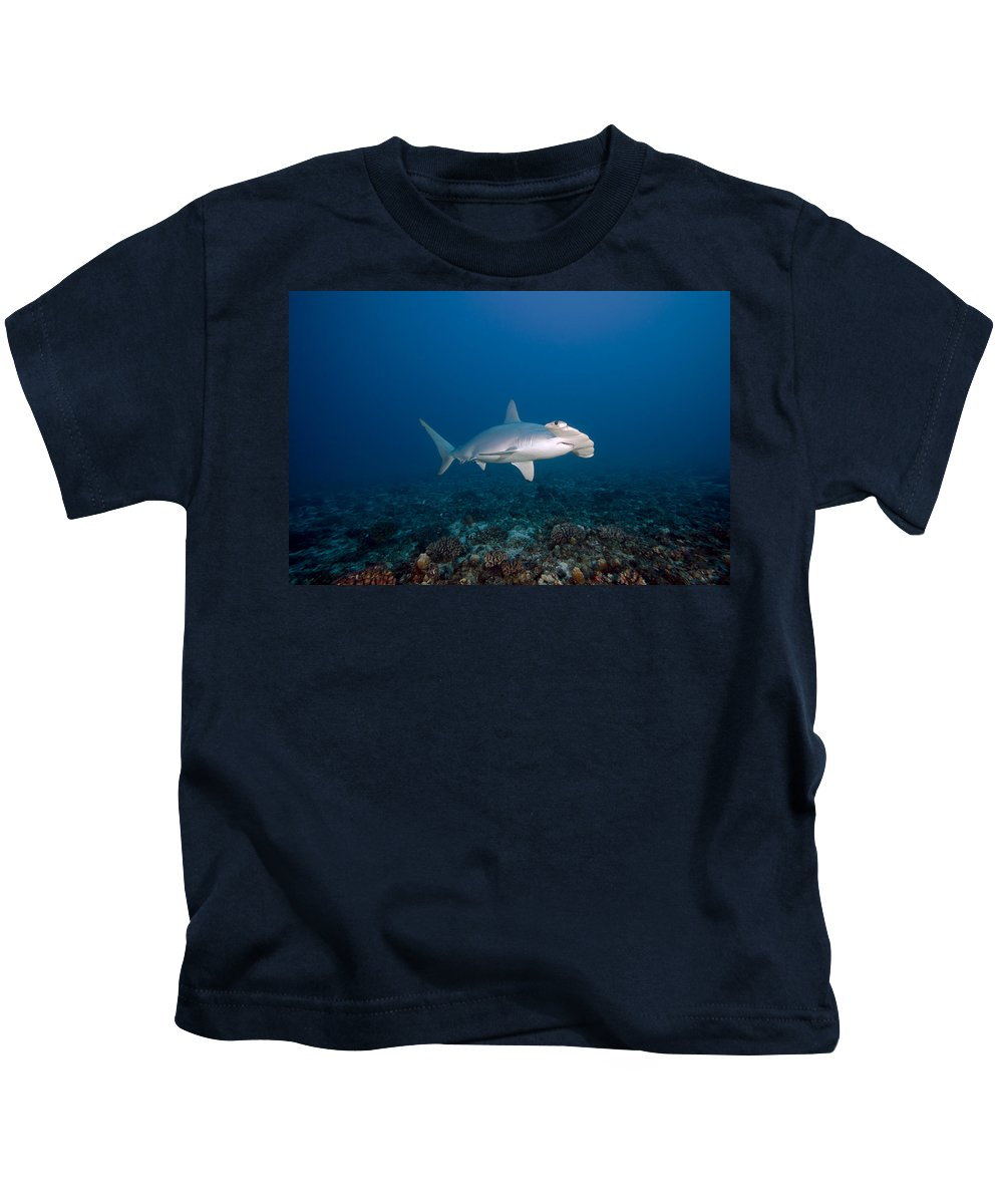 Alone Kids T-Shirt featuring the photograph Scalloped Hammerhead Shark by Dave Fleetham