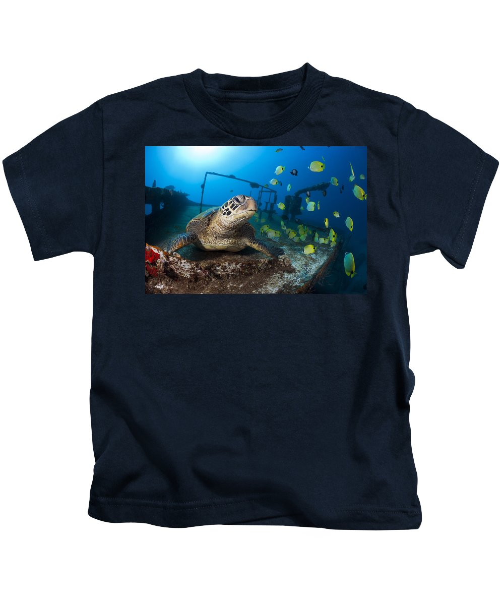 Animal Kids T-Shirt featuring the photograph Turtle And Sealife by Dave Fleetham - Printscapes