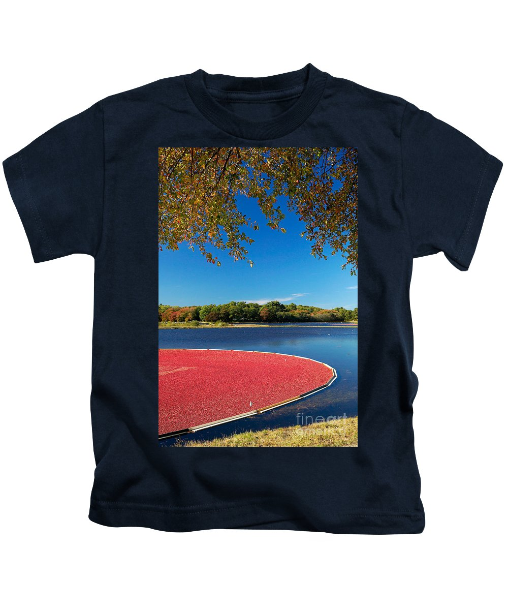 Cape Cod Kids T-Shirt featuring the photograph Cape Cod Cranberry Bog by Matt Suess