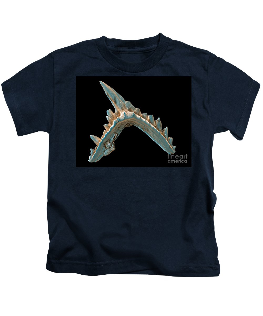 Sem Kids T-Shirt featuring the photograph Conodont Tooth, Sem by Ted Kinsman