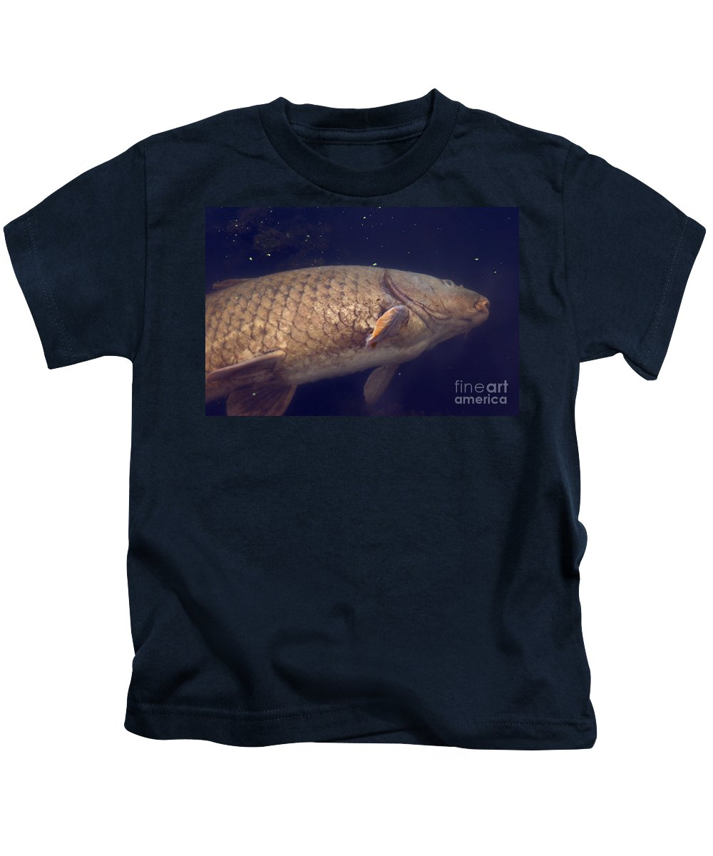 Fauna Kids T-Shirt featuring the photograph Dead Carp by Ted Kinsman