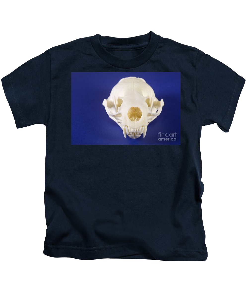 Nature Kids T-Shirt featuring the photograph Skull Of A River Otter by Ted Kinsman