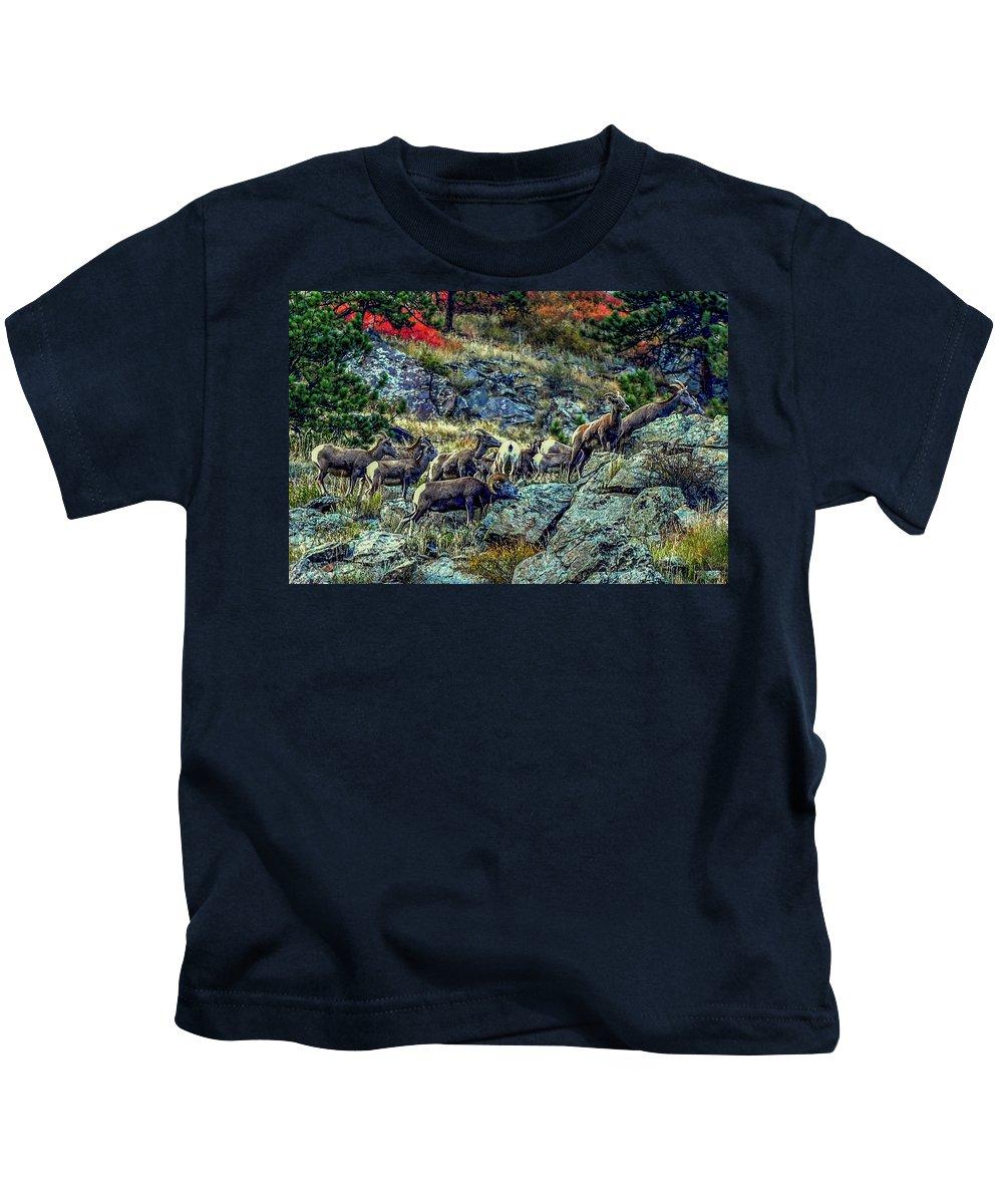 Big Horn Sheep Kids T-Shirt featuring the photograph Big Horn Sheep - Close-up by Marilyn Burton