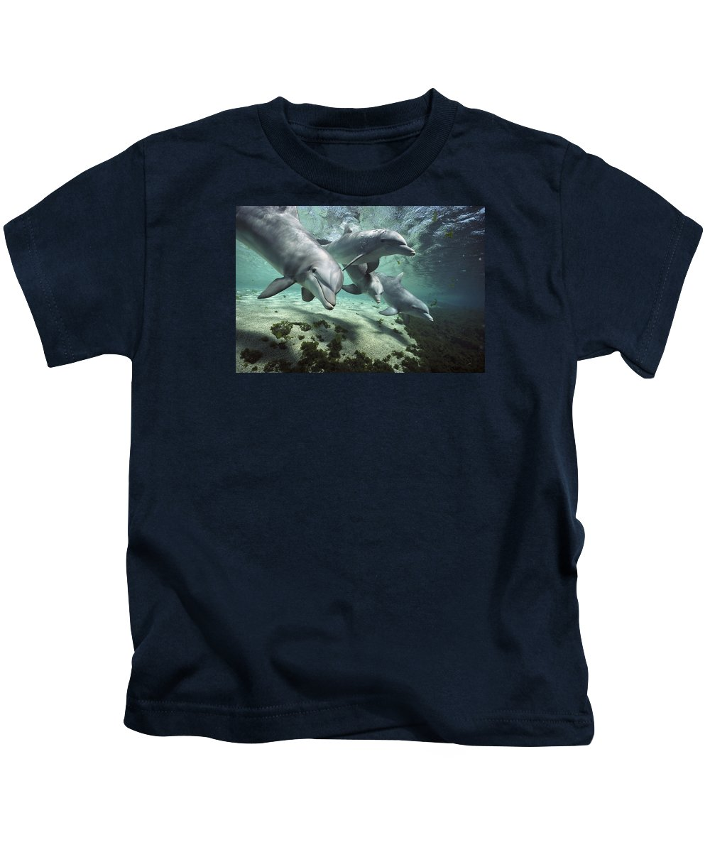 00082400 Kids T-Shirt featuring the photograph Four Bottlenose Dolphins Hawaii by Flip Nicklin