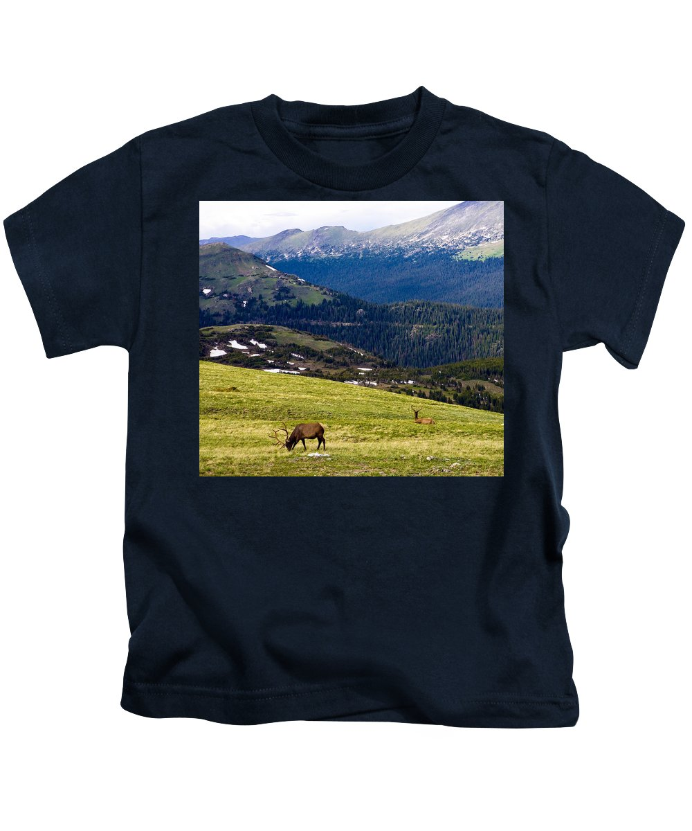 Americana Kids T-Shirt featuring the photograph Colorado Elk by Marilyn Hunt