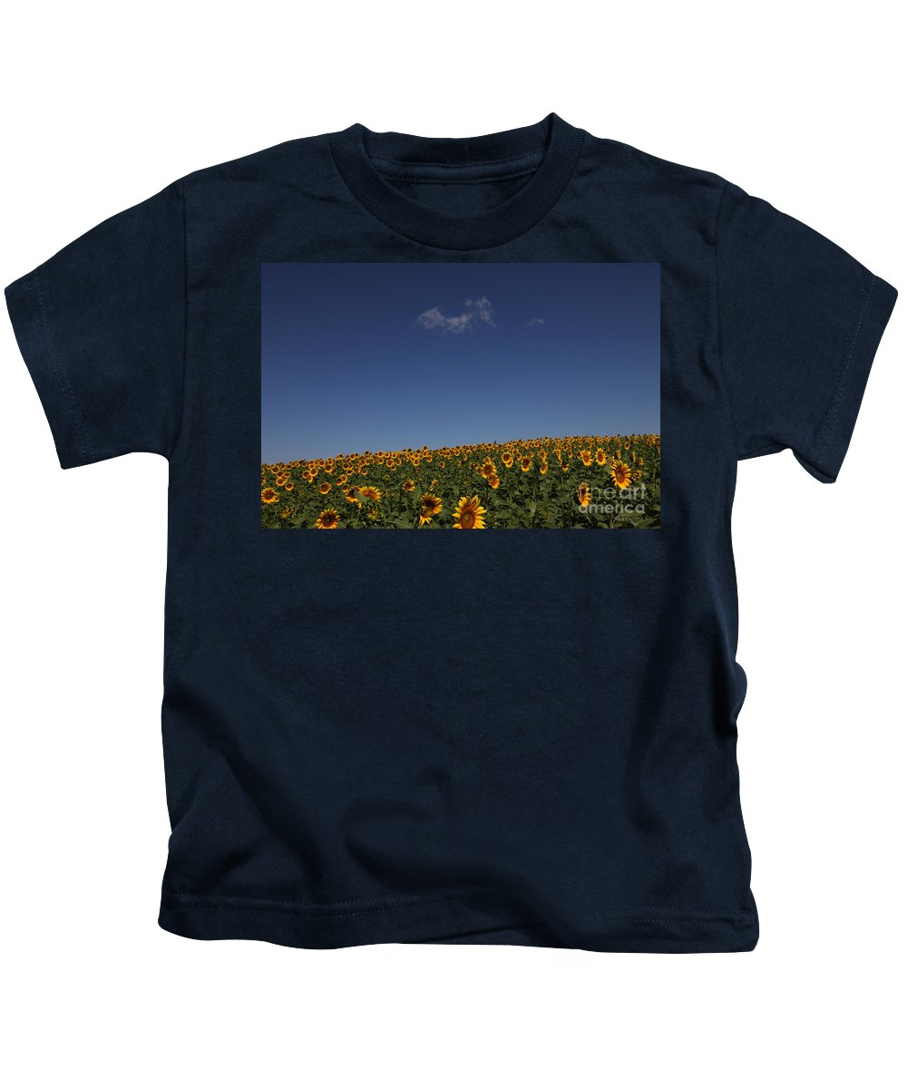 Sunflowers Kids T-Shirt featuring the photograph Curvature by Amanda Barcon