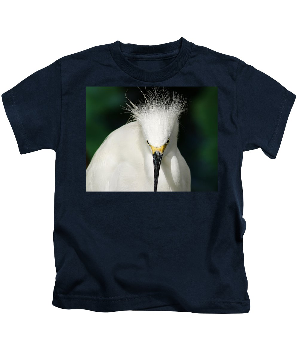 Egret Kids T-Shirt featuring the photograph Egret 2 by Anthony Jones