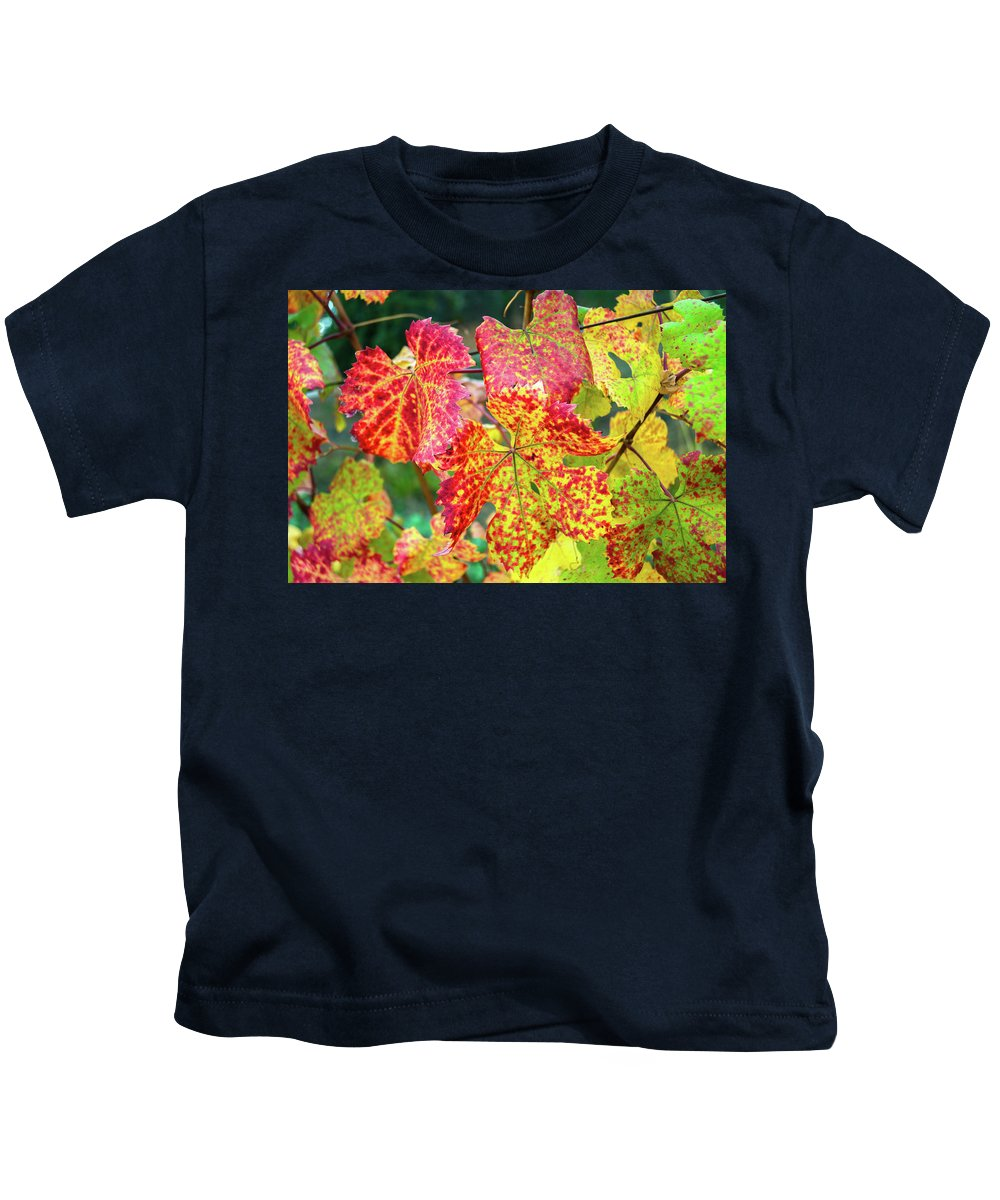Landscape Kids T-Shirt featuring the photograph Fall Colors At The Vineyard by Javier Flores