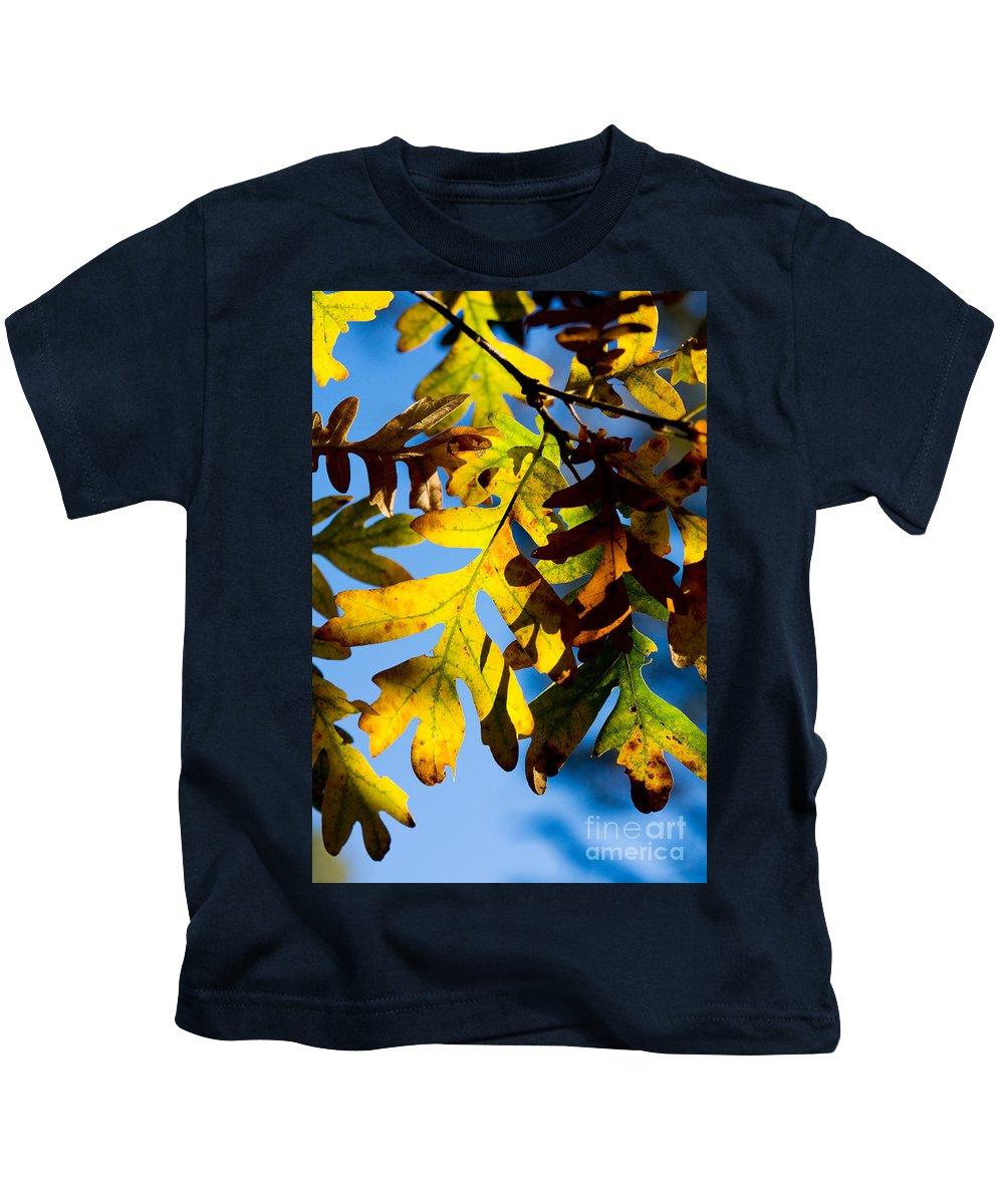Fall Kids T-Shirt featuring the photograph Fall Foliage by Matt Suess