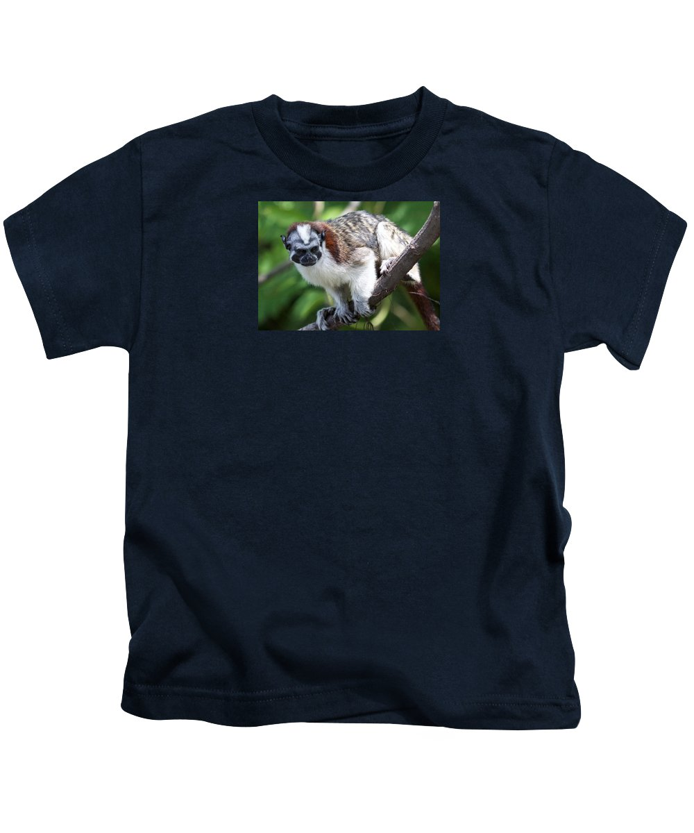 Monkey Kids T-Shirt featuring the photograph Geoffroy's Tamarin Saguinus Geoffroyi by Venetia Featherstone-Witty