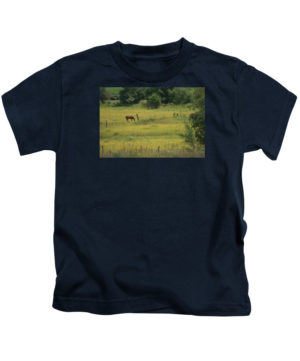 Horse Kids T-Shirt featuring the photograph Grazing Horse by Val Conrad