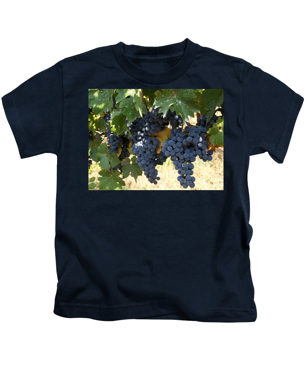 Grapes Kids T-Shirt featuring the photograph Harvest Time by Gale Cochran-Smith