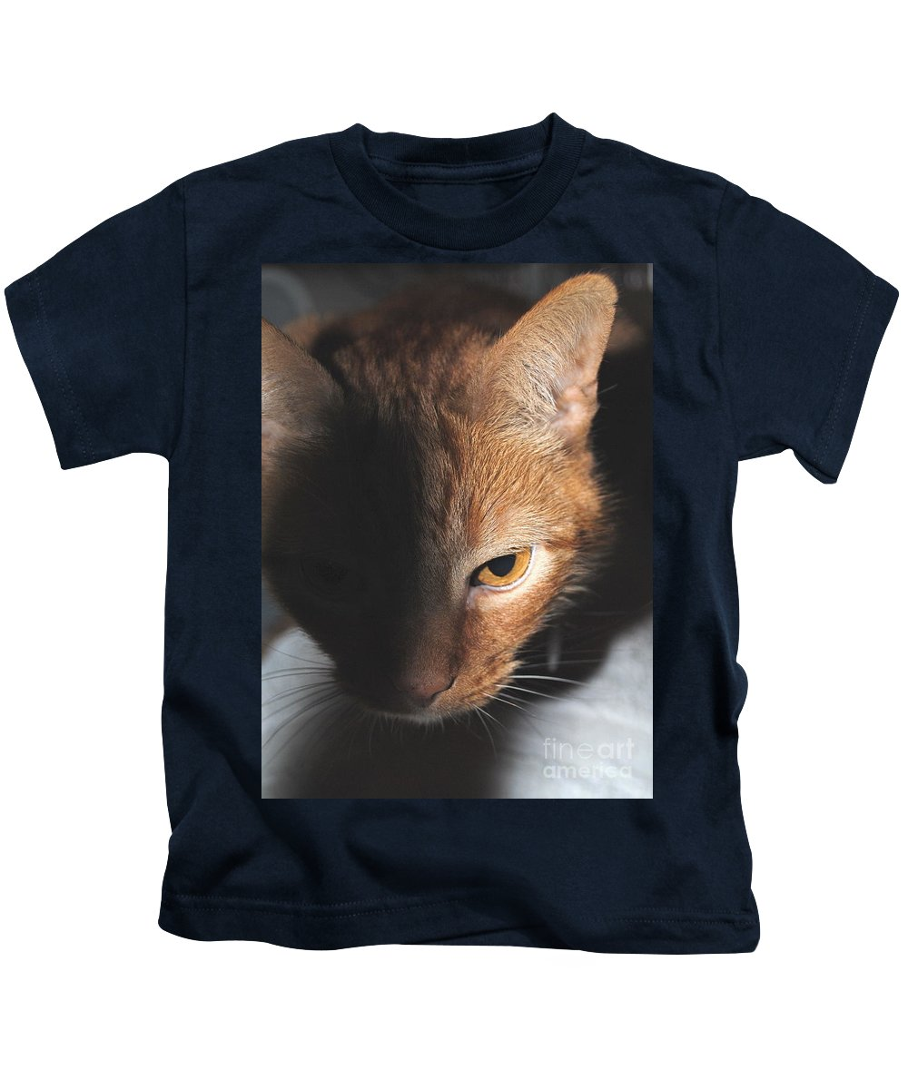 Cat Kids T-Shirt featuring the photograph Kitty by Jost Houk