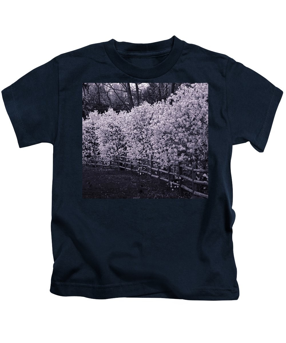 Magnolias Kids T-Shirt featuring the photograph Magnolias In Llewellyn Park, West Orange, New Jersey by Yuri Lev