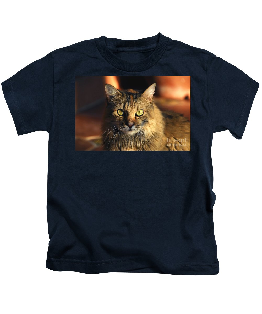 Main Coone Kids T-Shirt featuring the photograph Main Coone by David Lee Thompson