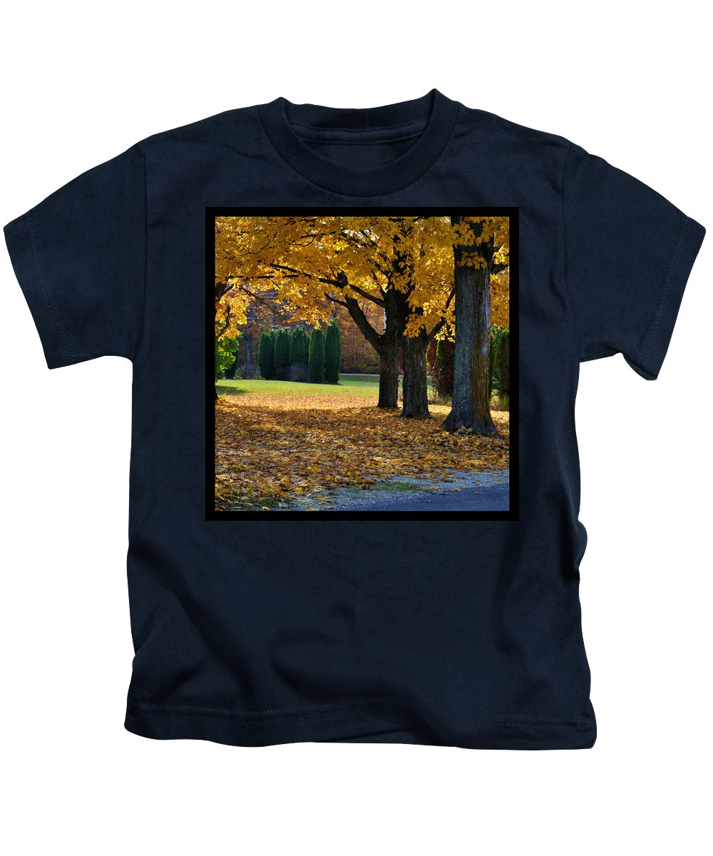 Trees Kids T-Shirt featuring the photograph Maple And Arborvitae by Tim Nyberg