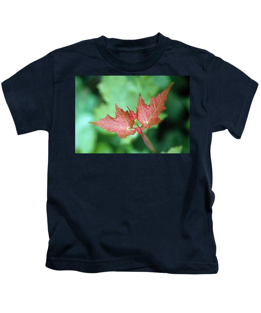 Maple Leaf Kids T-Shirt featuring the photograph Maple Red And Green by Laurie Paci