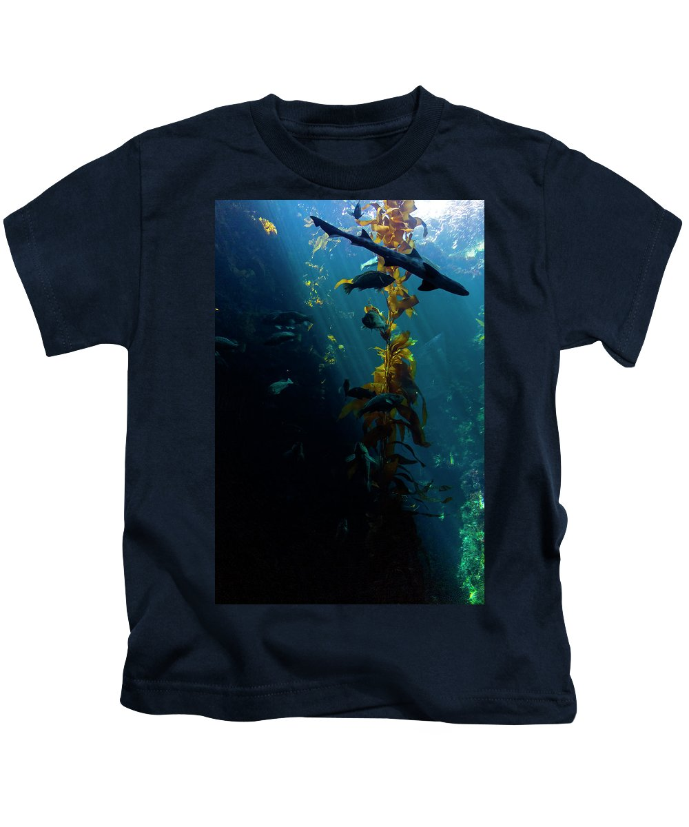 Monterey Kids T-Shirt featuring the photograph Monterey Depths II by Greg Reed
