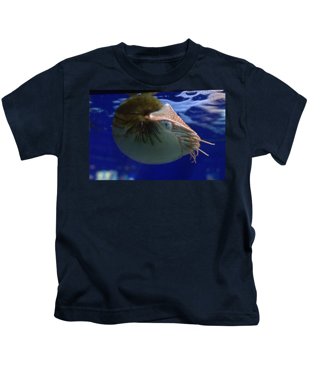 Marine Life Kids T-Shirt featuring the photograph Nautilus by Jerry Deroo