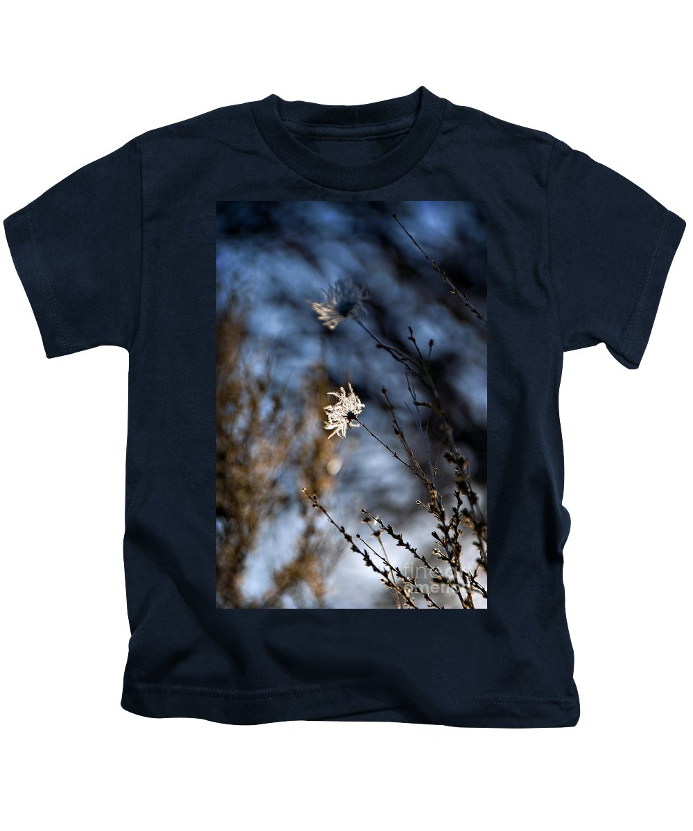 Afternoon Kids T-Shirt featuring the photograph New Mexico Sunlit Desert Weeds by Ray Laskowitz - Printscapes